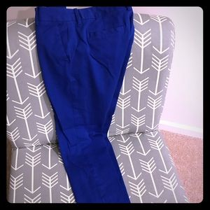 Tom Hilfiger ankle length blue dress pants